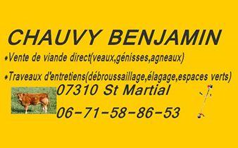 BENJAMIN CHAUVY